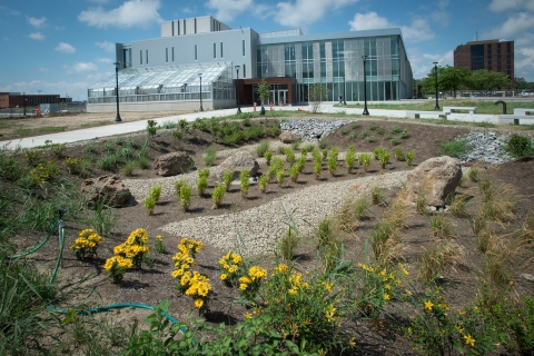 Exterior shot of the Science and Math Complex showing landscaping